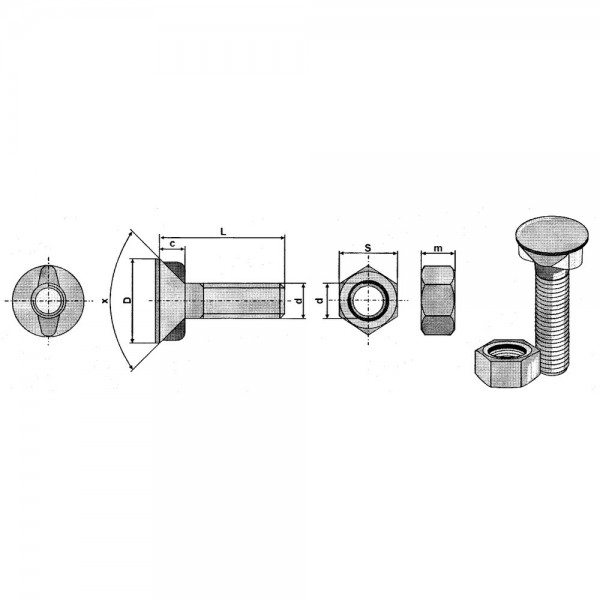 Scharschrauben mit 2 Nasen ISO5713