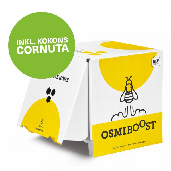 OsmiBOOST Cornuta, inkl. Kokons